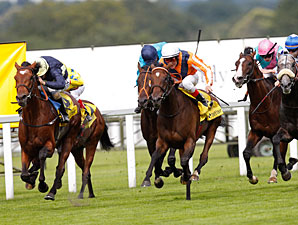 Danedream wins the 2012 King George.