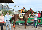 Milestone Win 1,000 for Jockey Vergara