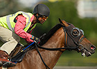 Danish Dynaformer Tries Top Level at Woodbine