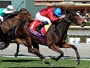 Dank Looms Large in Turf Filly Eclipse Battle