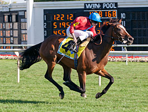 Dank Dashes to Victory in Beverly D.