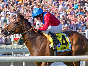 Dank Is Top Female Turf Horse Bloodhorse Com