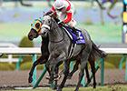 Danon Platina Captures Asahi Hai Futurity