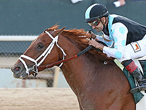 Danza wins the 2014 Arkansas Derby.