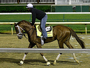 Danza - Churchill Downs, April 28, 2014