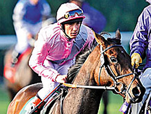 English Champion Dar Re Mi Retired