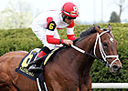 Distance Key for Dark Cove in Louisville 'Cap