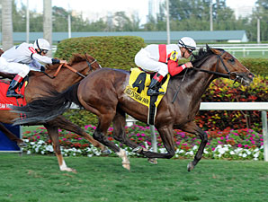 Data Link wins the 2013 Canadian Turf.