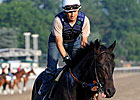 Dave in Dixie a Wild Card in Belmont
