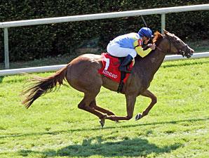 Dayatthespa wins the 2012 Appalachian.