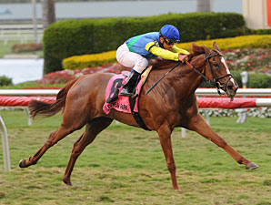 Dayatthespa Earns Grade in Herecomesthebride