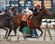 Daydreaming Wins for Resurgent McGaughey
