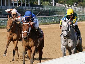 Decelerator wins the 2009 Debutante.
