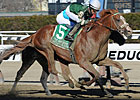 Declan&#39;s Warrior Gives Zito Bay Shore Upset