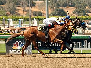 Declassify wins the 2014 Triple Bend at Santa Anita.