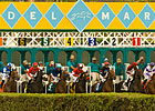 Del Mar&#39;s Total Handle Down by Nearly 6%