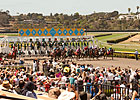 Del Mar Handle Up by 5.2%, Attendance Even