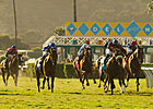 Del Mar Once Again Shifting Races Off Turf