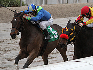 Delaunay wins the 2015 Bonapaw Stakes.