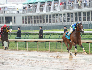 Delaunay wins the 2013 Churchill Downs Stakes.