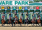 Handle Down at Challenged Delaware Park Meet