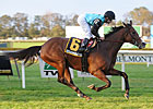 Denomination Heads Field for My Charmer