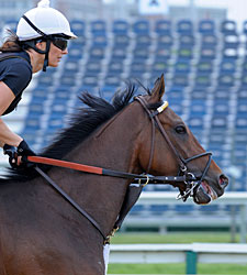 Departing  Sees Pimlico for First Time