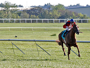Depeche Chat wins the Franklin Simpson Mile.