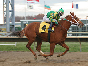 Der Meister wins the 2010 PA Nursery Stakes.