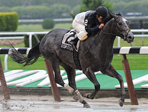 Despite the Odds wins the 2009 Hill Prince.