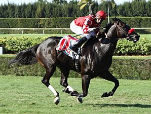Determinato wins the 2013 Kaiser Handicap.