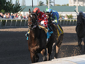 Determinato wins the 2011 Spectacular Bid.