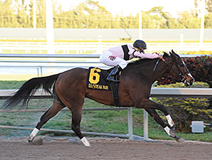 Devil's Cave wins the Sabin Stakes.