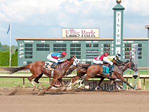 Devious Intent Spoils Groupie Doll's Gardenia