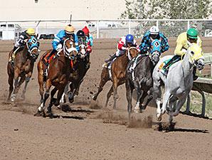 Diabolical Dame wins the 2015 Bank of Albuquerque Stakes.