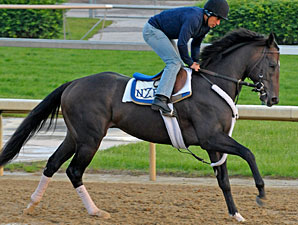Dialed In Early 3-1 Kentucky Derby Favorite
