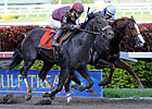 Dialed In Pushes Button in Florida Derby