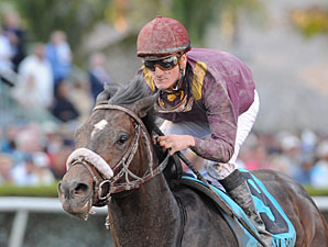 Dialed In to Return in Gulfsteam Allowance