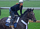 Dialed In Returns to Training at Palm Meadows