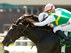 Diamond Diva Digs Deep in CashCall Mile