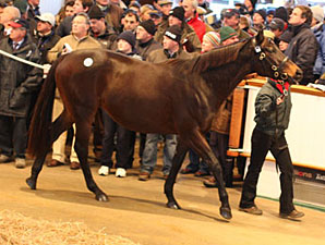 Gross Jumps 26% During Tatts Dec Second Day