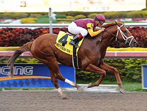 Discreet Dancer wins the 2013 Gulfstream Park Handicap.