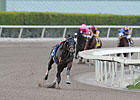 Fort Larned &#39;Walking Good&#39; After Gate Stumble
