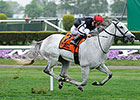 NY-Breds in Spotlight at Spa on Travers Eve