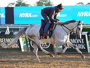 Discreet Marq - Belmont Park, May 22, 2015.