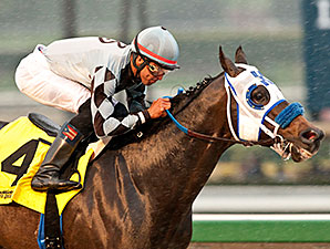 Distinctiv Passion wins the Joe Hernandez Stakes.