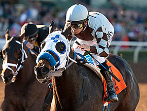 Distinctiv Passion wins the Midnight Lute Stakes.