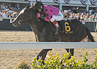Sykes Buys Diva Delite; Pointing Toward Oaks