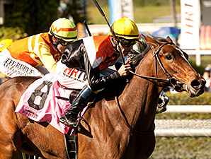 Diversy Harbor Leads Well-Matched Providencia
