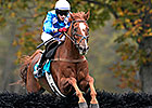 Steeplechase Eclipse to Divine Fortune